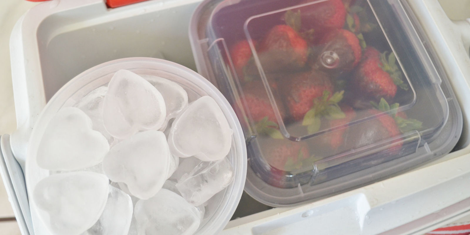 Best Way To Pack A Cooler How To Keep Things Cold Longer