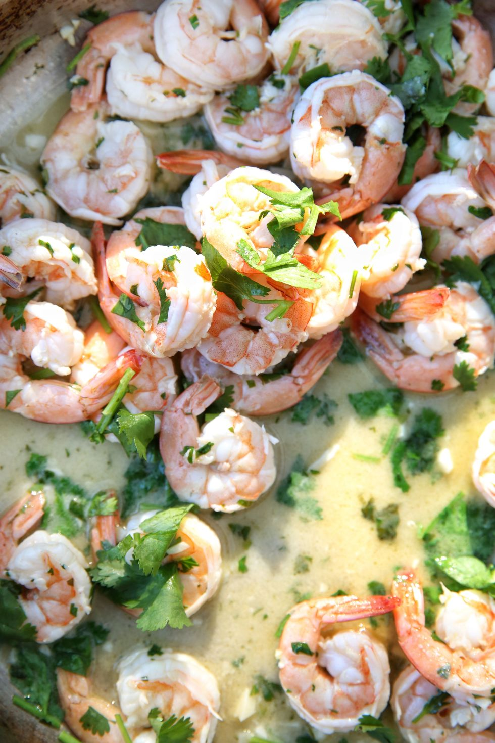 100 easy shrimp recipes how to cook shrimpdelish forumfinder Gallery