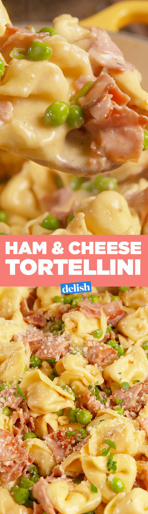 Best Ham Amp Cheese Tortellini How To Make Ham Amp Cheese