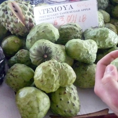 The atemoya is actually a fruit hybrid. It is a combination of the sugar apple and the cherimoya. The fruit is both sweet and tart and combines the flavors of pineapple, coconut, and vanilla. Atemoyas are popular to Taiwan, Palestine, and Lebanon, however it is native to Central and South America. The flesh can be scooped out of the shell and is best when chilled. Watch out for the large black seeds found throughout, they are toxic!