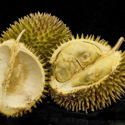 strange green fruit fruit that starts with d
