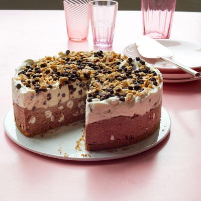 Smores ice cream cake recipe ccuart Gallery