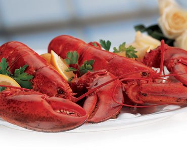 how to cook and eat lobster