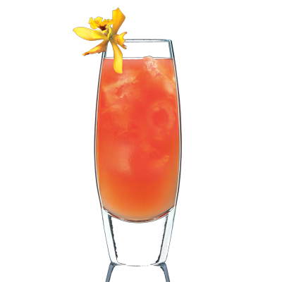 Four Seasons Recipe Drink